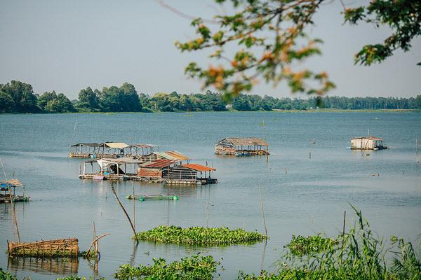 Búng Bình Thiên - Điểm du lịch An Giang