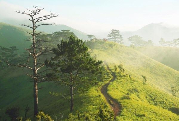 Băng rừng trên cung Trek đẹp nức tiếng