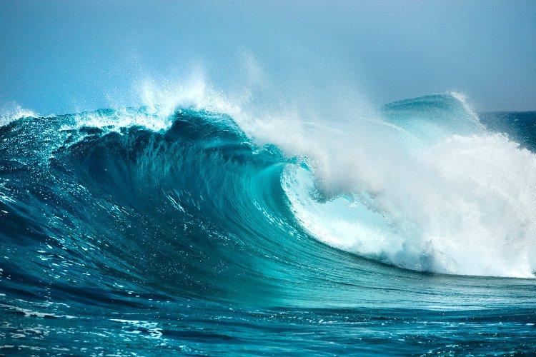 phân tích sóng xuân quỳnh